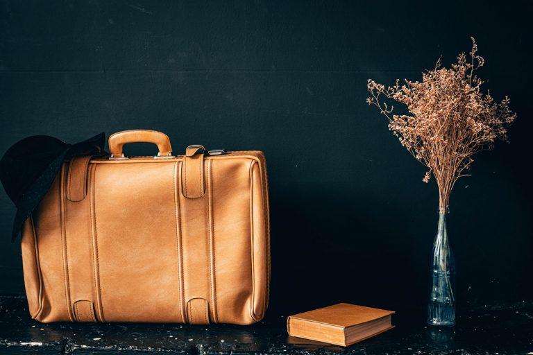 Vor einem schwarzen Hintergrund befinden sich eine braune Tasche, ein Buch und eine Trockenpflanze