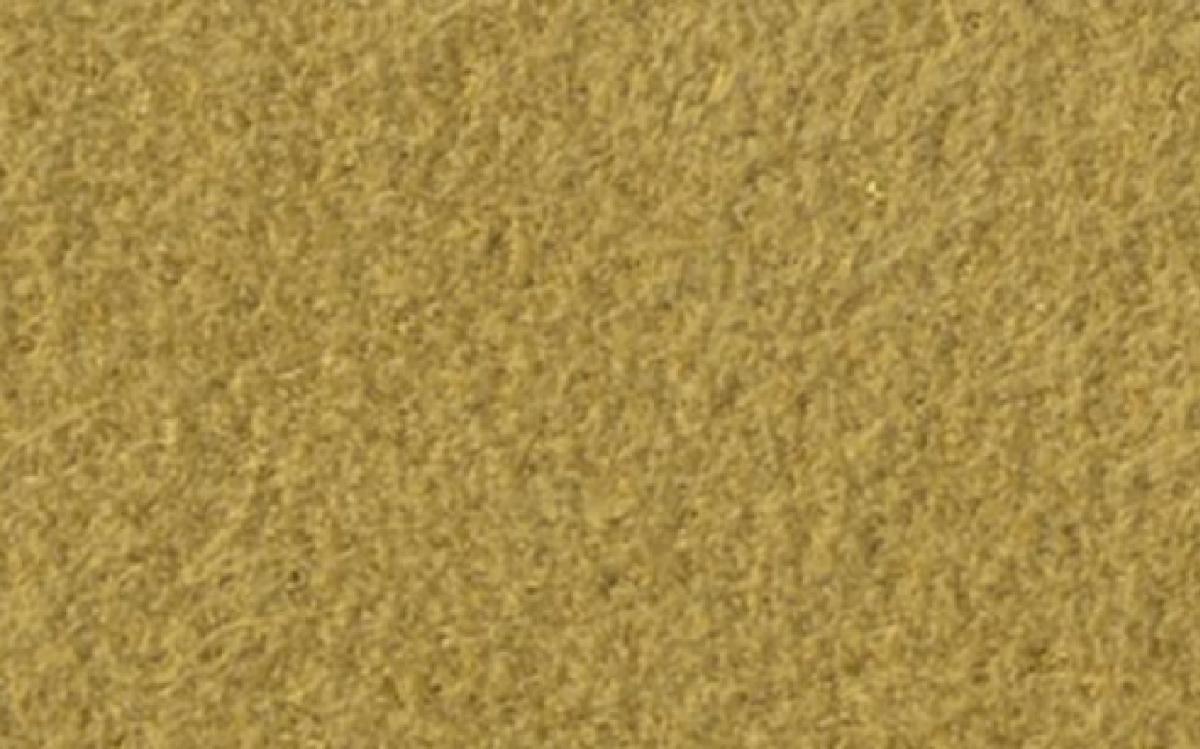 Alcantara® gold 0,8mm (1153) (B)