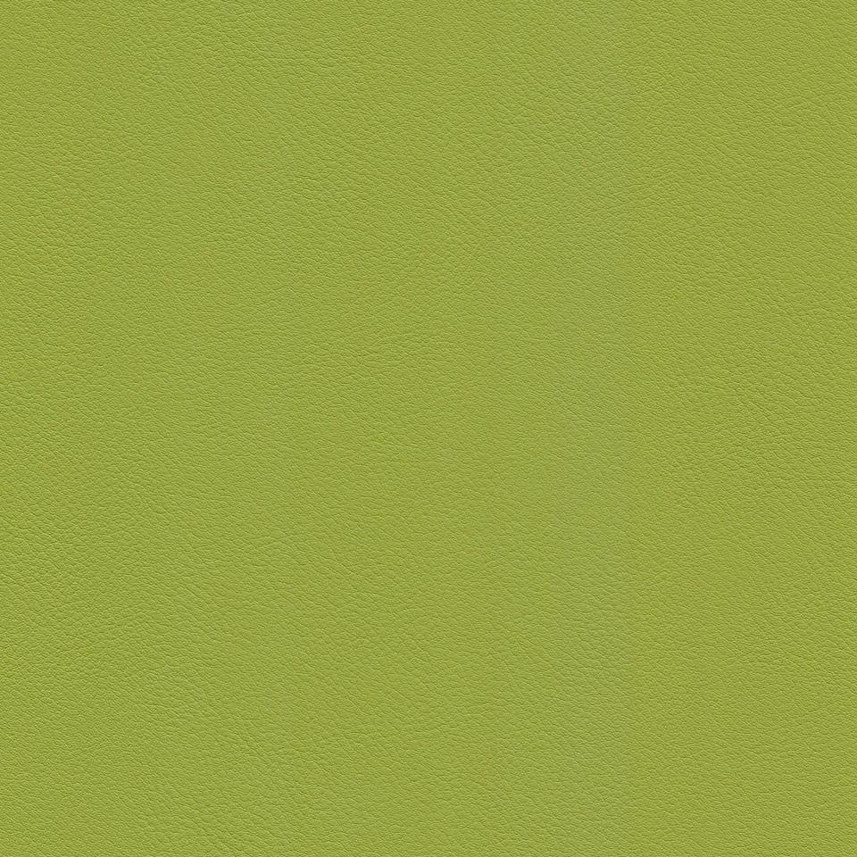 Kunstleder apfelgrün