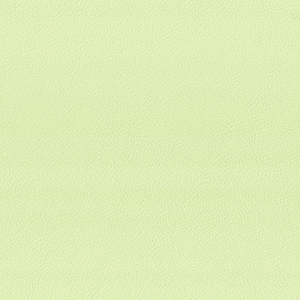 Kunstleder blass-grün