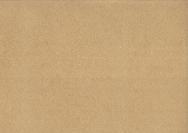 Alcantara camel