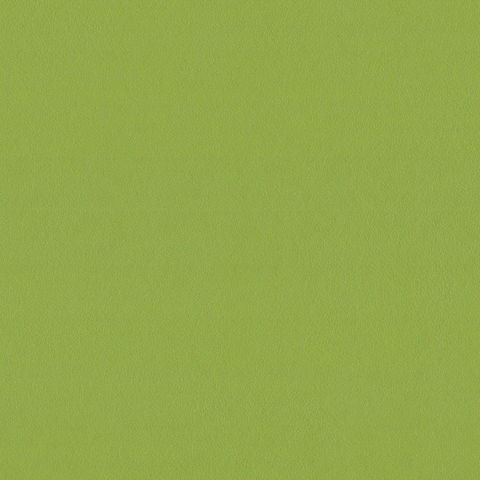 Kunstleder antimikrobiell apfelgrün