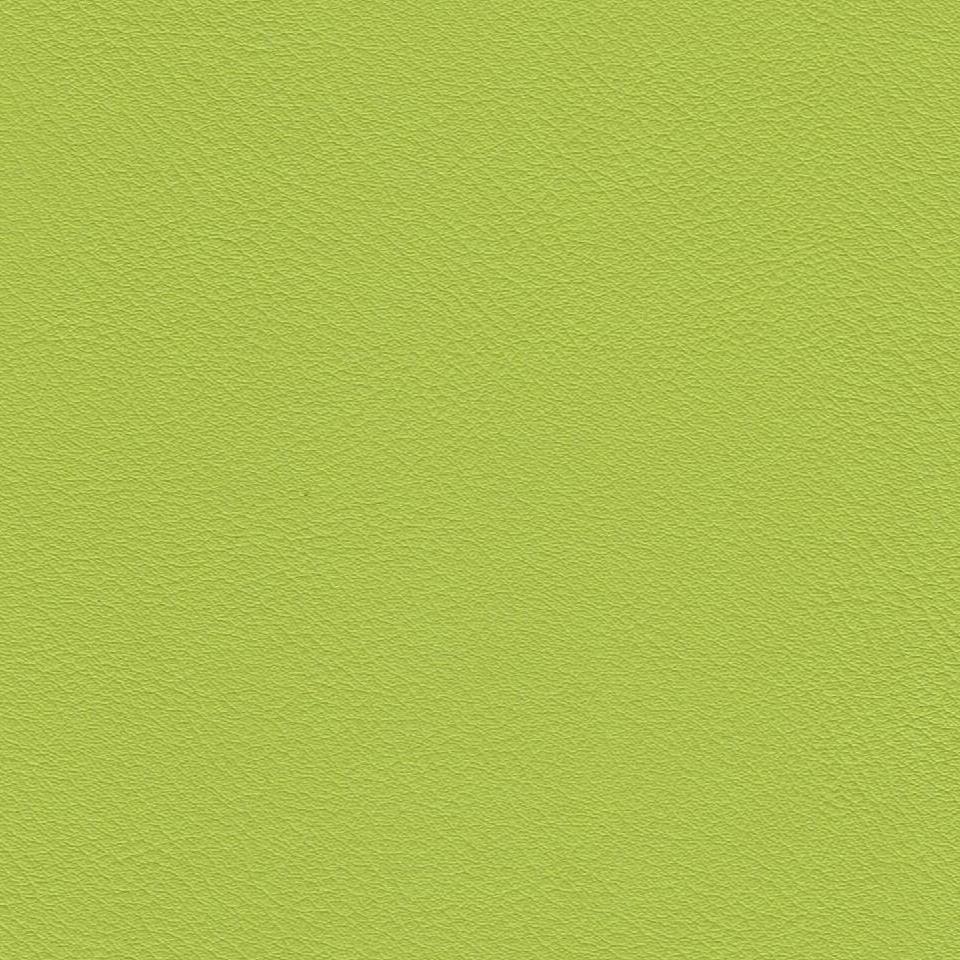 "Kunstleder ""ölbeständig"" pastellgrün"