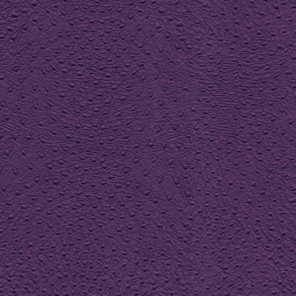 Kunstleder Baby-Strauss purple-metallic
